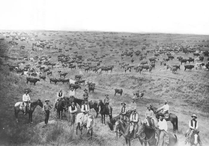 looper wild wild west script pdf
