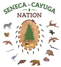 the seneca cayuga nation of oklahoma has their roots in the area now known as new york then moved to ohio before coming to indian territory