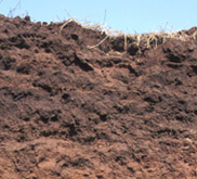 image of Oklahoma's reddish-brown soil