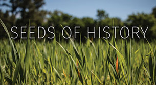 seeds of history